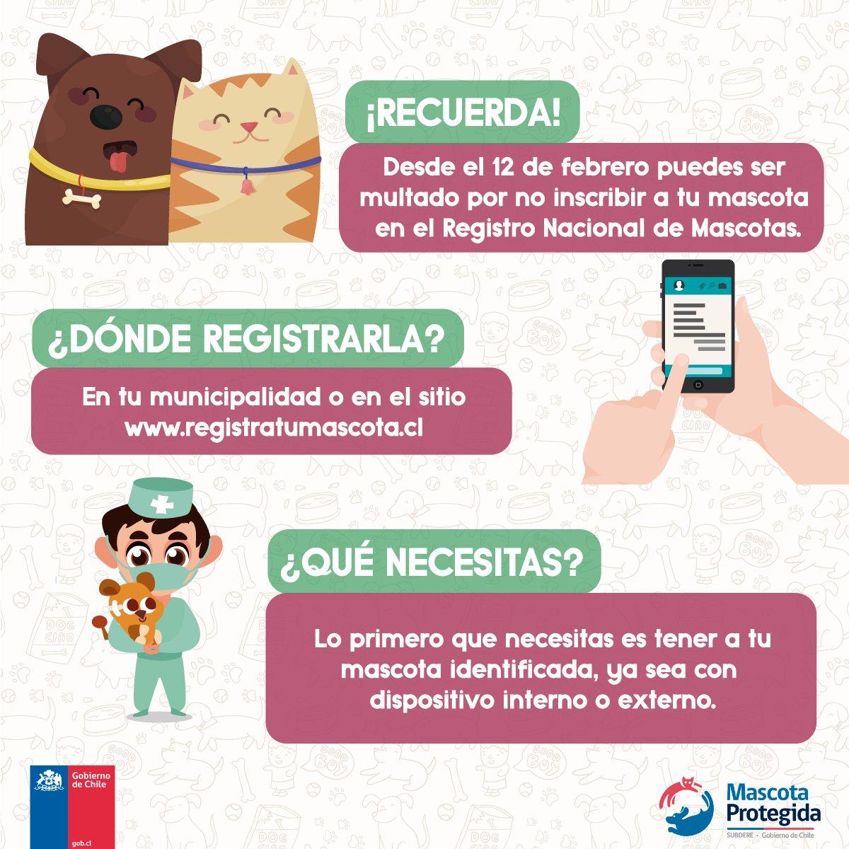 El 12 de febrero vence el plazo para inscripción de mascotas.